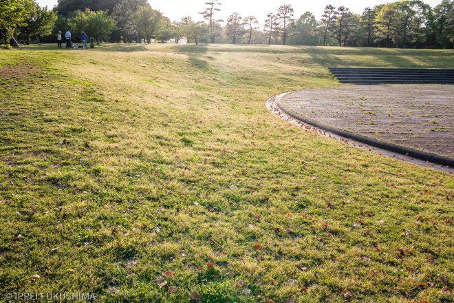 憧れの芝生